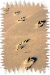 Each step a small beginning...